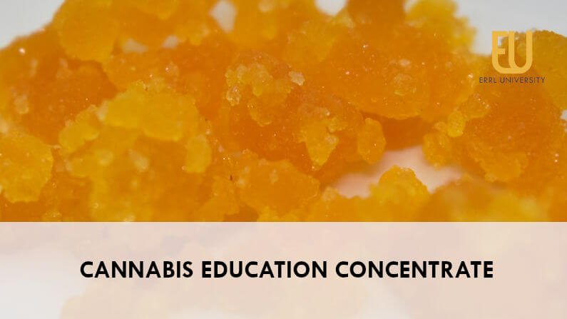 Cannabis Education: Concentrate